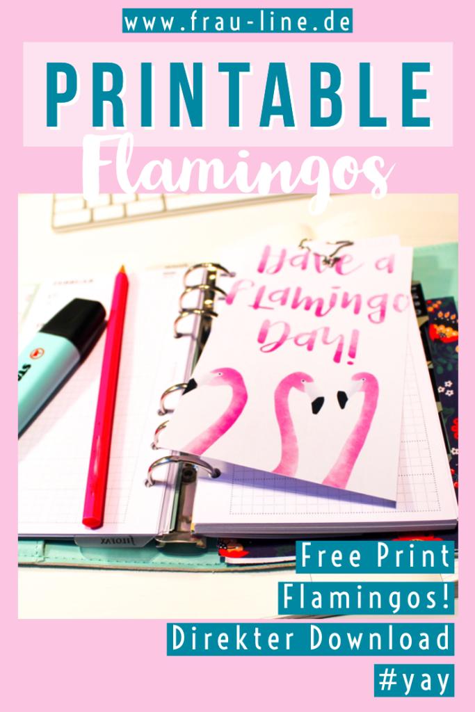 Pin Kostenloses Poster Flamingo